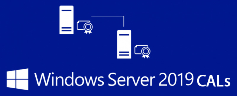 ПО Microsoft Windows Server CAL 2019 Rus 1pk DSP OEI 5 Clt Device CAL lic (R18-05838)